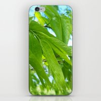 hawaii iPhone & iPod Skins featuring Hawaii by Jarod Austin Photography