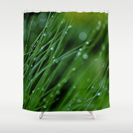 Dreamland Shower Curtain