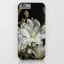 An Introduction to Spring iPhone Case