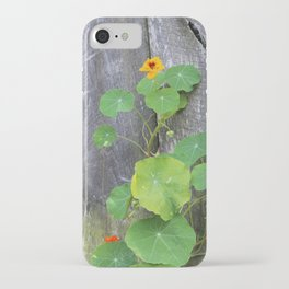 The Garden Wall iPhone Case