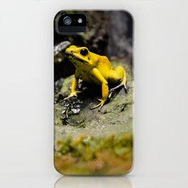 Golden Dart Frog iPhone Case