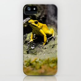 Golden Dart Frog iPhone Case