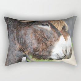 burros Rectangular Pillow