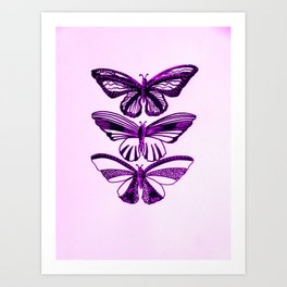 Pink and black butterflies, with pastel pink or pastel purple Art Print