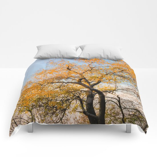 YELLOW TREE Comforters