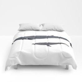 Sei whale (Balaenoptera borealis) Comforters