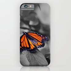 Monarch BW iPhone 6s Slim Case
