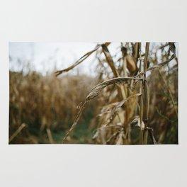 Autumn Cornstalk II Rug