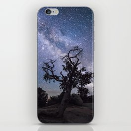 Astronomer's Tree iPhone Skin