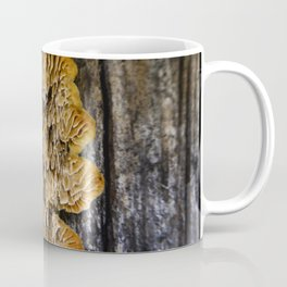 Spores on Wood #1 Coffee Mug