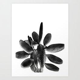 Black White Cactus #1 #plant #decor #art #society6 Art Print