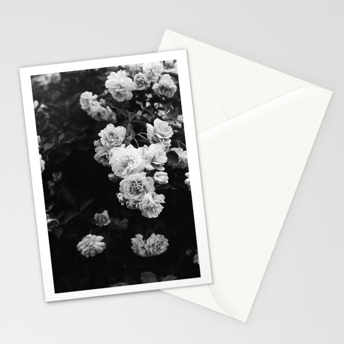 Tumbling Roses Stationery Cards
