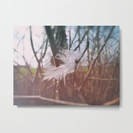 Soft Hello Metal Print