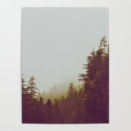 Olive Green Sepia Misty Pine Forest Landscape Photography Parallax Trees Poster