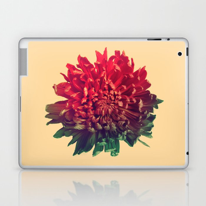 Celebration Laptop & iPad Skin