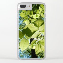 Sunlight Canopy V Clear iPhone Case