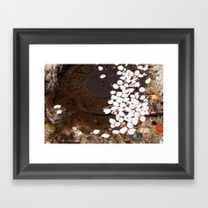 puddle petals Framed Art Print