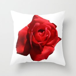 Red Rose Isolated Throw Pillow