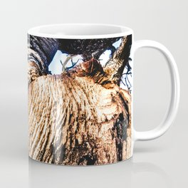 Twisted Trunk // Close up Tree Photography Wood Grain Forest Branches Outdoor Nature Decor Coffee Mug