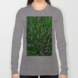 Lavender Close Up Long Sleeve T-shirt