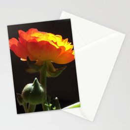 Reaching for the Sun Stationery Cards