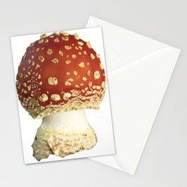 Amanita Muscaria Fungi Stationery Cards
