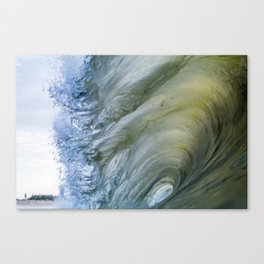 Fully Concealed Canvas Print