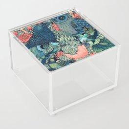 Cosmic Egg Acrylic Box