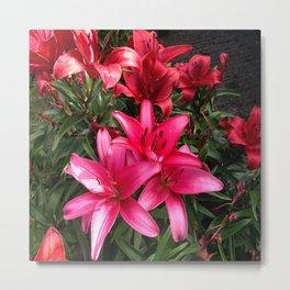 Lillies 3 Metal Print