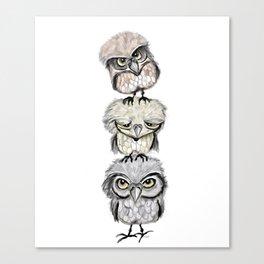 Owl Totæm Canvas Print