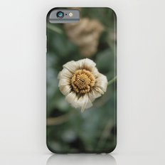 Winter Flower iPhone 6s Slim Case