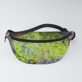 Clinging to Stone (Lichen) Fanny Pack