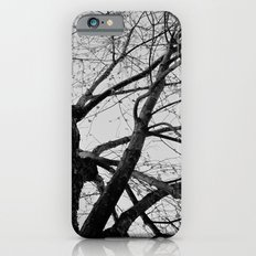 Youth Upon My Limbs II iPhone 6s Slim Case