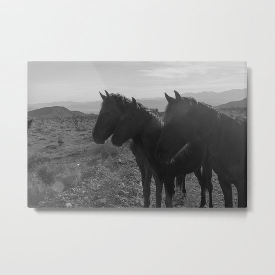 Desert Horses Metal Print