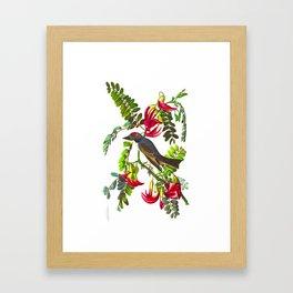 Piping Flycatcher Bird Framed Art Print