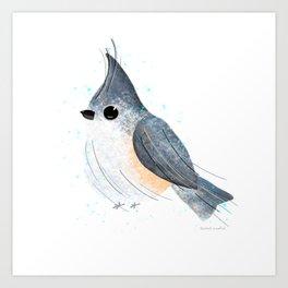 Tufted Titmouse Bird Illustration  Art Print