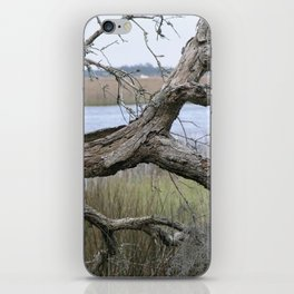 Quiet on the Intercoastal iPhone Skin
