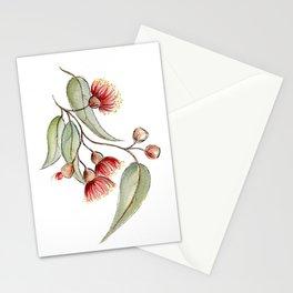 Flowering Australian Gum Stationery Cards