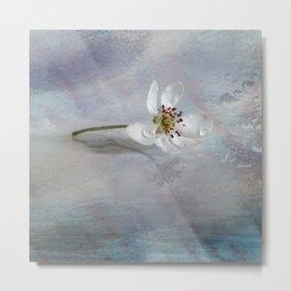 Pear flower Art Metal Print