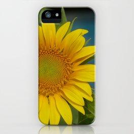 September Sunnies III iPhone Case