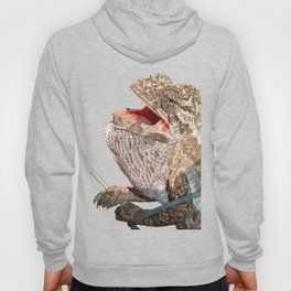 A Chameleon With Open Mouth Isolated Hoody