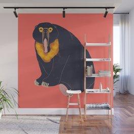 Sun Bear Study 1 Wall Mural