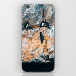 Biontro I iPhone Skin