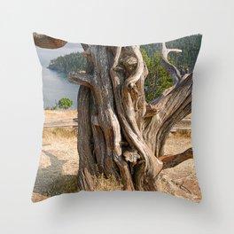 OLD JUNIPER AT BURROWS PASS ANACORTES Throw Pillow