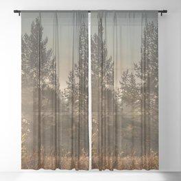 Autumn sun beam Sheer Curtain