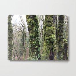 Mossy Escape Metal Print