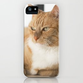 Ginger Cat Relaxing iPhone Case