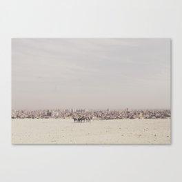 Dusty History Canvas Print