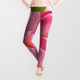 Pink Tulips Leggings
