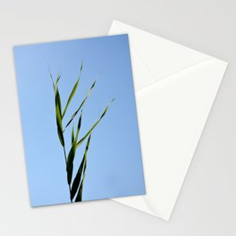 reed closeup Stationery Cards